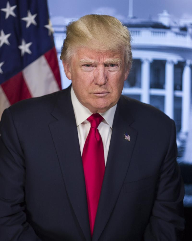 Donald J Trump portrait