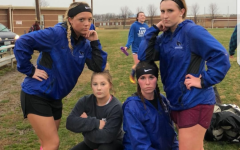 Spring sports have sprung into action